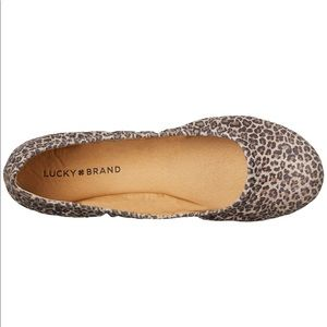 Lucky Brand Shoes - Lucky Brand Emmie flat- Leopard